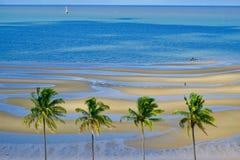 莫桑比克的岸 免版税库存图片