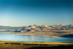 莫诺湖边 免版税库存照片