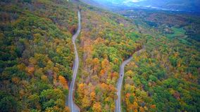莫霍克族足迹簪子轮在秋天 影视素材