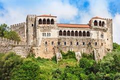 莱利亚城堡 免版税库存照片