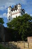 莱茵河畔埃尔特菲莱城堡 免版税库存图片
