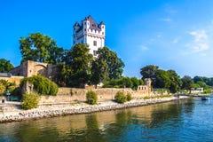 莱茵河畔埃尔特菲莱沿莱茵河的上午莱茵,在德国 免版税库存图片