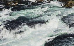 莱茵河的水上面莱茵瀑布 免版税库存图片