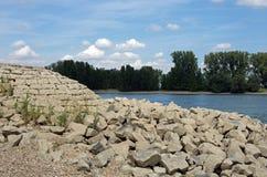 莱茵河(莱茵)的岸 免版税图库摄影