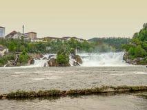 莱茵瀑布在瑞士 图库摄影