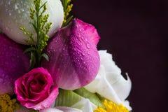 莲花和上升了 免版税库存照片