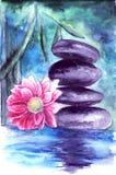 莲花和石头在水中 免版税库存图片