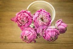 莲花在花瓶钢生活中 图库摄影