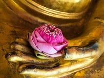 莲花在菩萨的手上 库存图片