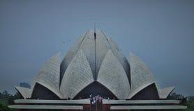 莲花寺庙在新德里印度 免版税库存图片