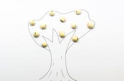莲花播种树 免版税库存照片