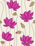 莲花无缝模式的粉红色 库存照片