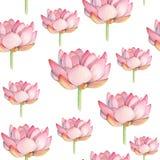 莲花水彩无缝的样式 库存图片