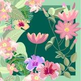 莲花热带庭院 库存图片