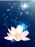 莲花神秘的横幅 皇族释放例证