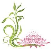 莲花,竹子 库存例证