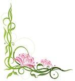 莲花,竹子 向量例证
