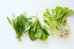 莳萝、菠菜和莴苣在白色木背景 库存图片