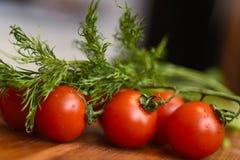 莳萝新鲜的成熟蕃茄和堆  库存照片