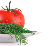 莳萝蕃茄 免版税库存图片