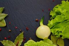 莴苣、圆白菜、大蒜、月桂叶和葱叶子在bl 免版税图库摄影