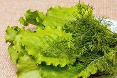 莴苣和莳萝在板材 与高内容的好食物vi 免版税库存照片