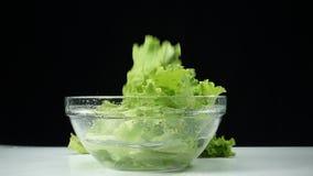 莴苣在慢动作把落入留在一杯水 健康鲜美和健康食品 股票录像