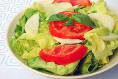 莴苣沙拉蕃茄 免版税库存照片