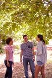 获得三个的朋友聊天和乐趣 免版税图库摄影