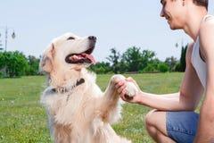 获得与狗的乐趣 库存图片