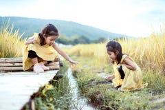 获得两个愉快的亚裔小孩的女孩一起使用的乐趣 库存照片