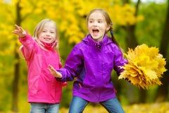 获得两个逗人喜爱的小女孩乐趣在美好的秋天天 使用在秋天公园的愉快的孩子 会集黄色秋天foliag的孩子 库存图片