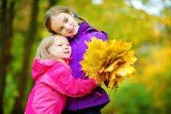 获得两个逗人喜爱的小女孩乐趣在美好的秋天天 使用在秋天公园的愉快的孩子 会集黄色秋天foliag的孩子 免版税库存图片