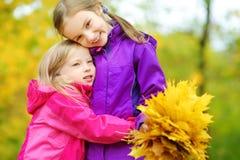 获得两个逗人喜爱的小女孩乐趣在美好的秋天天 使用在秋天公园的愉快的孩子 会集黄色秋天foliag的孩子 库存照片