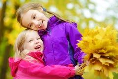 获得两个逗人喜爱的小女孩乐趣在美好的秋天天 使用在秋天公园的愉快的孩子 会集黄色秋天foliag的孩子 免版税库存照片