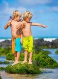 获得两个年轻的男孩在tropcial海滩的乐趣 库存照片