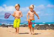 获得两个年轻的男孩在tropcial海滩的乐趣 免版税库存图片
