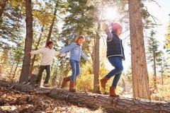 获得乐趣和平衡在树的孩子在秋天森林地 免版税图库摄影