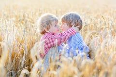 获得乐趣和拥抱在黄色麦子的两个小兄弟姐妹男孩 图库摄影