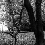获得乐趣和笑在秋天的有吸引力的愉快的豪华夫妇 免版税库存图片