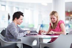 获得二位的大学生乐趣一起学习 免版税库存图片