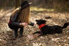 获得俏丽的女孩名义上演奏和与她的宠物Brovko Vivchar的乐趣 免版税库存照片