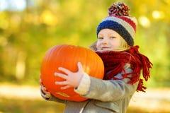 获得可爱的小女孩在一个南瓜补丁的乐趣在美好的秋天天 库存图片