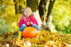 获得可爱的小女孩在一个南瓜补丁的乐趣在美好的秋天天 图库摄影