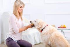 获得宜人的妇女与狗的乐趣 免版税图库摄影