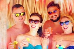 获得小组愉快的朋友在热带海滩,节日晚会的乐趣 免版税库存图片