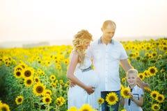 获得愉快的家庭乐趣户外 库存图片