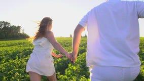 获得愉快的浪漫的夫妇乐趣户外 爱 跑掉在草甸的夫妇 年轻握手的人和妇女 股票视频