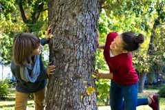 获得无忧无虑的少年乐趣,当使用在树附近时 库存照片