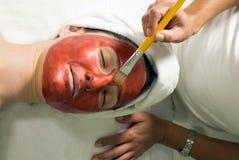 获得水平的屏蔽u妇女的接近的脸面护理 免版税库存照片